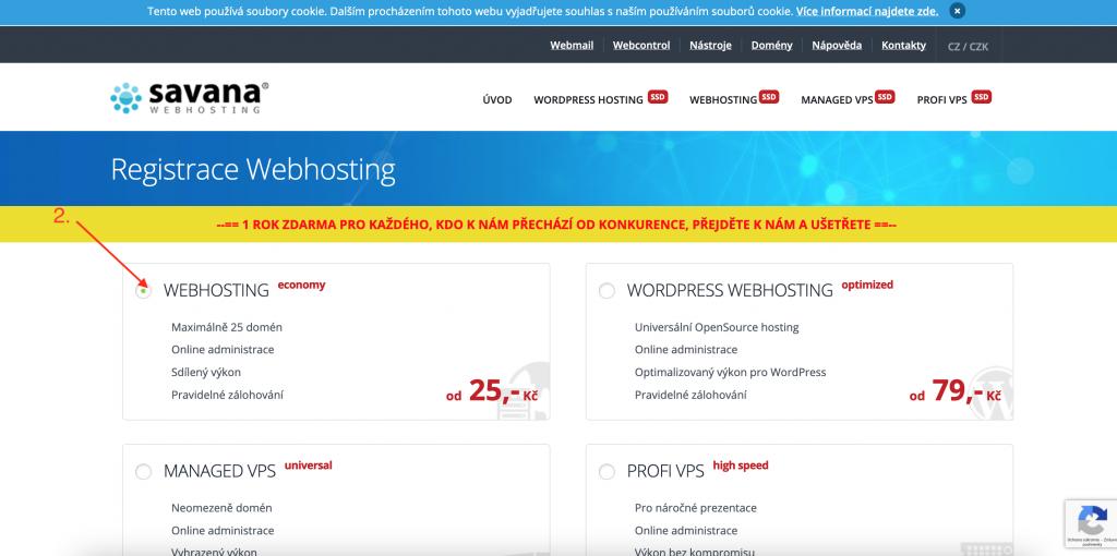 Savana výběr webhostingu